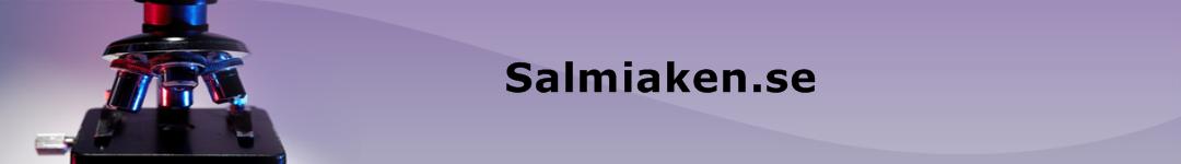 Salmiaken